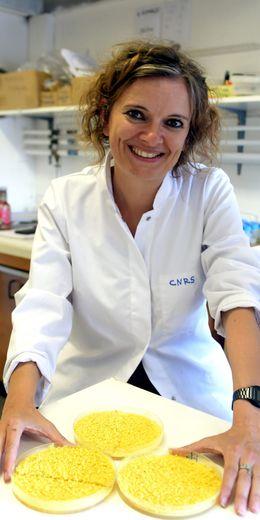 Audrey Dussutour a fait du blob une super star de la science